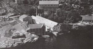 Hermetikkfabrikken i Strandvik var Bjelland-fabrikk nr. 19. Arbeidarbustader bak. (Foto: Widerøe)